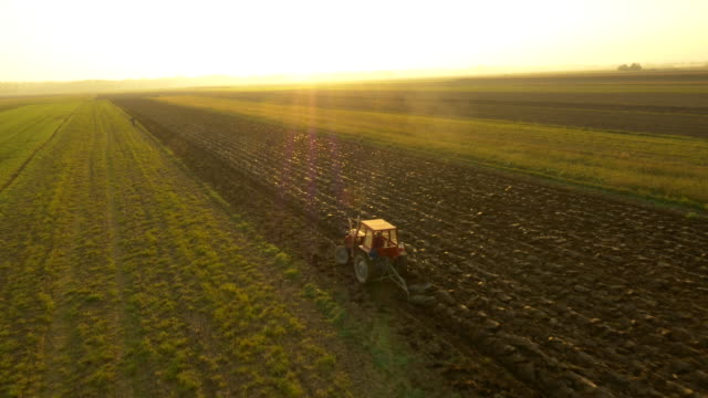 stockvideo's en b-roll-footage met aerial farmer plowing the field - tractor