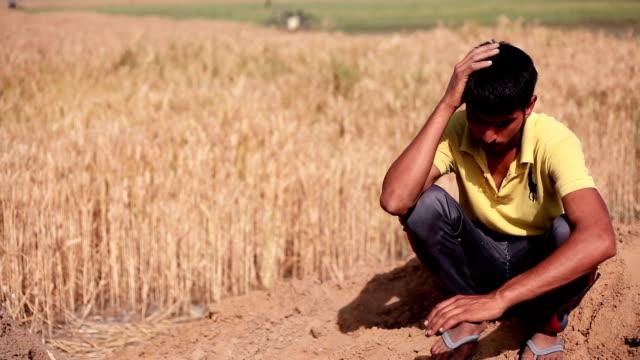 フィールドで農夫の肖像画 - indian ethnicity点の映像素材/bロール