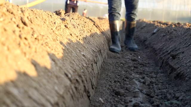 farmer vorbereitung soli stellt für den anbau plant. - jäthacke stock-videos und b-roll-filmmaterial