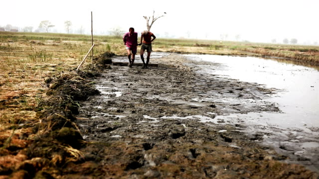 農家農業装置を引っ張る - 泥点の映像素材/bロール