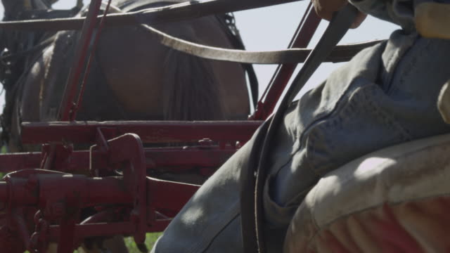 farmer riding on the back of antique plow - maultier stock-videos und b-roll-filmmaterial