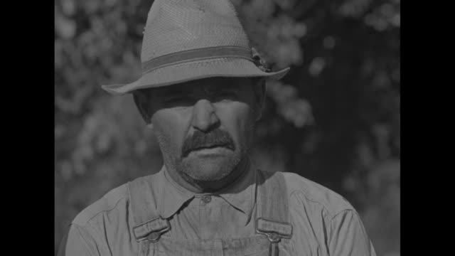 vidéos et rushes de cu farmer saying he offered crop but told had to destroy and thinks it foolish / boy pitching hay on big haystack / note exact day not known - tempête de poussière