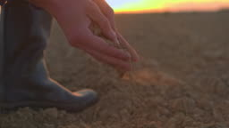 CU farmer scooping and examining dirt in rural,plowed field at sunset