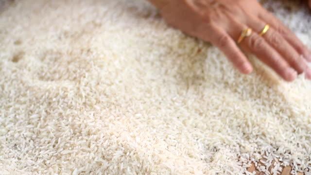 vídeos y material grabado en eventos de stock de granjero seleccionar arroz mal fuera el arroz. - bandeja para servir