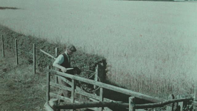 1938 montage farmer sharpening scythe and harvesting hayfield / united kingdom - scythe stock videos and b-roll footage