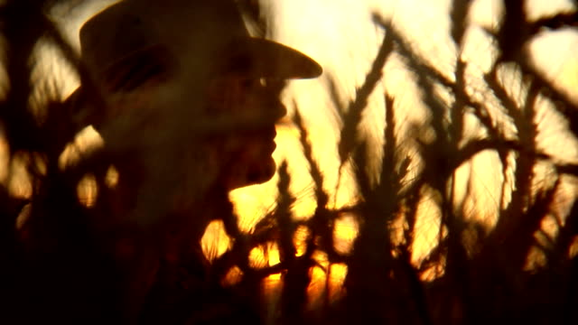 stockvideo's en b-roll-footage met farmer silhouette sunset - cowboy