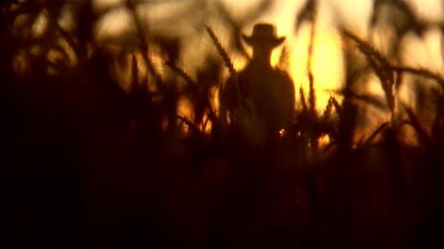 farmer silhouette - cowboy stock videos & royalty-free footage