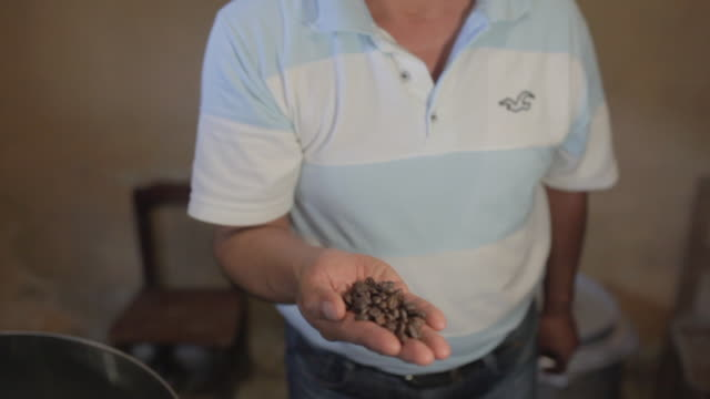 a farmer smelling the toasted coffee beans - smelling stock videos and b-roll footage