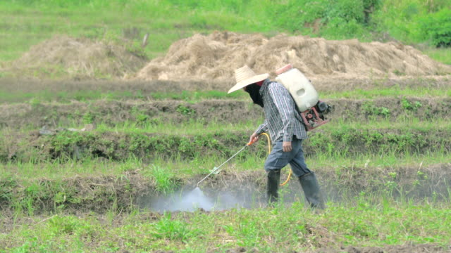 farmer spraying pesticide - standing water stock videos & royalty-free footage