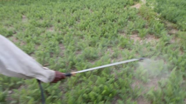 a farmer sprays pesticide on a field - spraying stock videos & royalty-free footage