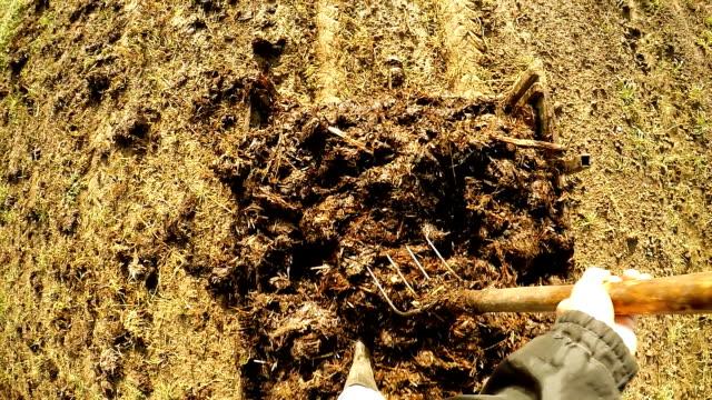 vídeos de stock e filmes b-roll de slo mo agricultor propagação estrume sobre o campo - trator