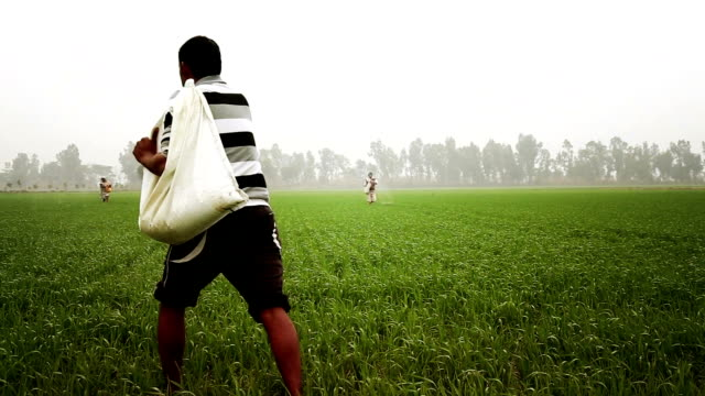 農家スプレッド肥料フィールドでの小麦の植物 - 吹きかける点の映像素材/bロール