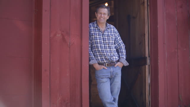 ds farmer standing in barn doorway with his hands in his pockets / stowe, vermont, united states - hands in pockets stock videos & royalty-free footage