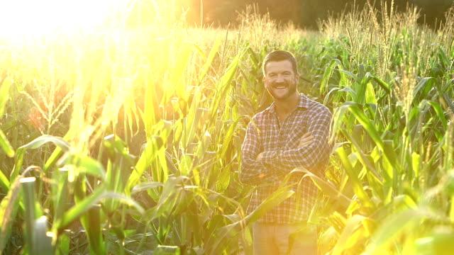 vídeos y material grabado en eventos de stock de granjero en el campo de maíz - maíz zea