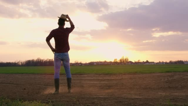 farmer standing in idyllic,rural plowed field at sunset,real time - one mid adult man only stock videos & royalty-free footage