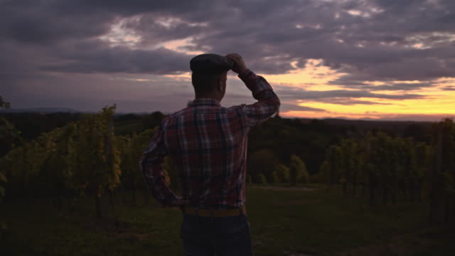 Farmer standing in the vineyard at dusk