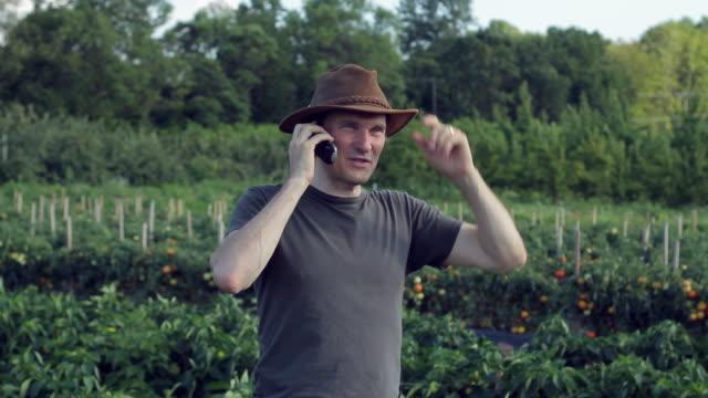 vídeos de stock, filmes e b-roll de ms farmer talking on cell phone / lebonan township, new jersey, usa - orgânico