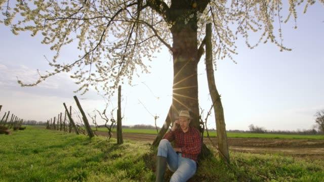 vídeos de stock e filmes b-roll de farmer talking on smart phone under tree in sunny,idyllic vineyard,real time - retroiluminado