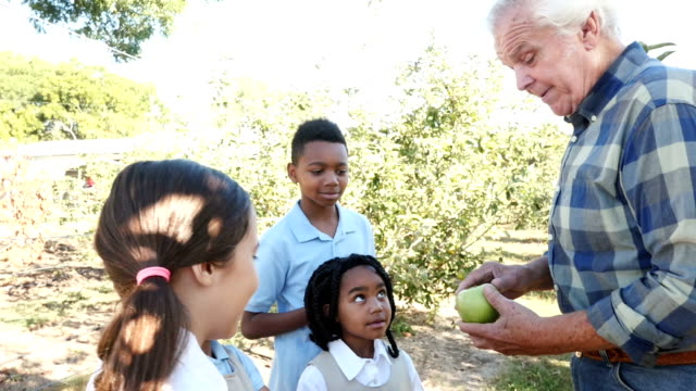 Farmer teaching a group of private elementary school students about apple farming