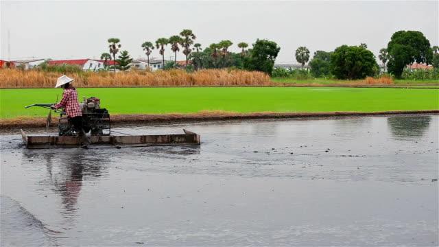 Landwirt verwenden Traktor farm für Pflanze Arbeiten auf Reis von thailand