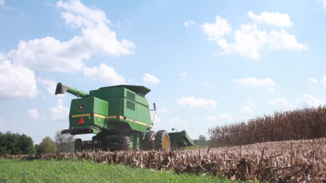 farmer uses a combine to harvest a dry cornfield october 7, 2018 near stinesville, indiana. the united states and china are engaged in a trade war... - trade war stock videos & royalty-free footage