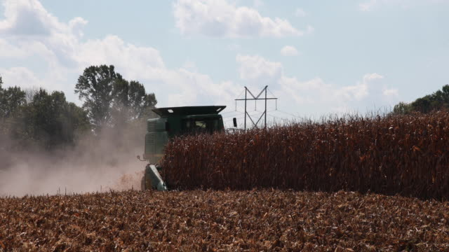 farmer uses a combine to harvest a dry cornfield october 7, 2018 near stinesville, indiana. the united states and china are engaged in a trade war... - 関税点の映像素材/bロール
