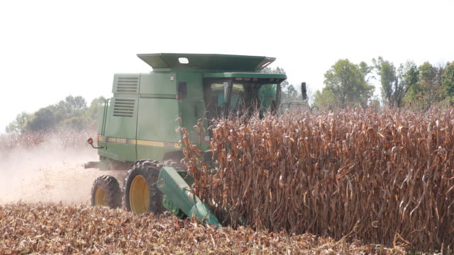 a farmer uses a combine to harvest a dry cornfield october 7 2018 near stinesville indiana the united states and china are engaged in a trade war... - harvesting stock videos and b-roll footage