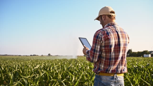 stockvideo's en b-roll-footage met landbouwproducent met gebruikmaking van een digitaal tablet in het veld - irrigatiesysteem