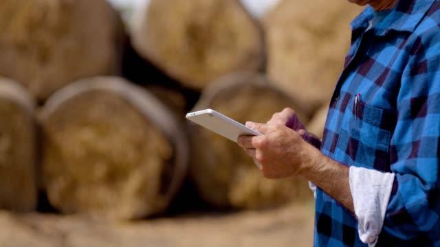 farmer using digital tablet at farm barn, stable, livestock, cow. - farmer hay stock videos & royalty-free footage