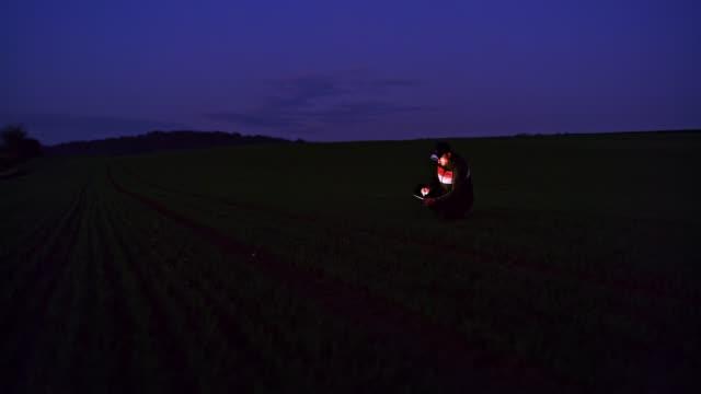 vídeos de stock, filmes e b-roll de fazendeiro usando tablet digital no campo de trigo escuro à noite, tempo real - pouca luz