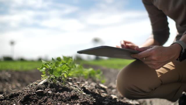 vídeos de stock e filmes b-roll de farmer using digital tablet in farm, close-up - modificação genética