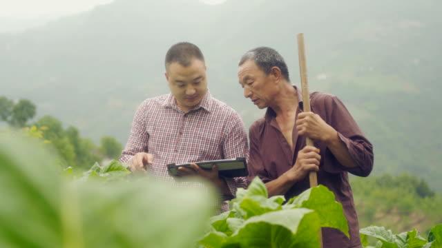 farmer using digital tablet in farm - technician stock videos & royalty-free footage