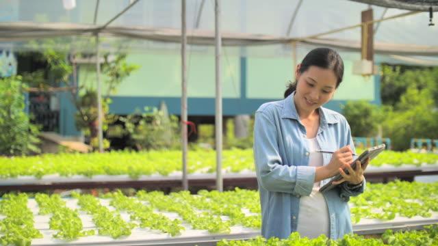 vídeos y material grabado en eventos de stock de agricultor usando tableta digital - una mujer de mediana edad solamente
