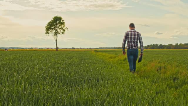 ws slo mo farmer using tablet in field - farm stock videos & royalty-free footage