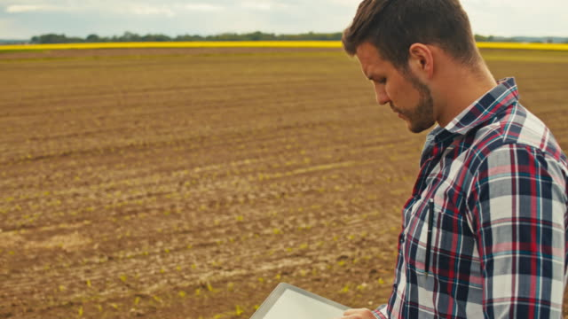 ms tu slo mo farmer using tablet in field - plaid shirt stock videos & royalty-free footage