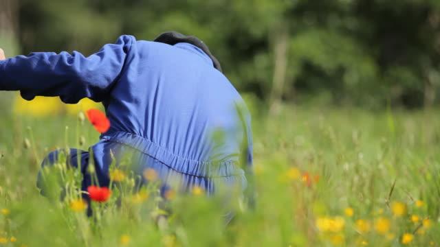 vidéos et rushes de farmer - parterre de fleurs
