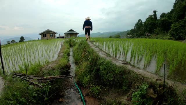 TS agriculteur traverser la crête de champ