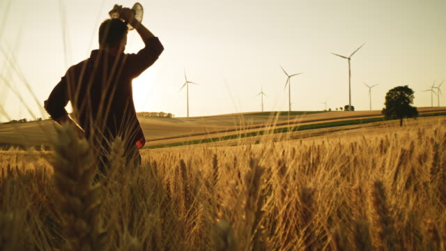 ds farmer walking in a wheat field surrounded with wind turbines - turbine stock videos & royalty-free footage