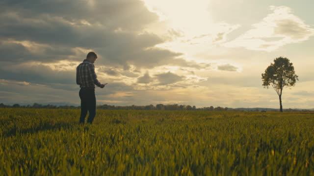 ws ts slo mo farmer walking in field with tablet - tartan stock videos & royalty-free footage