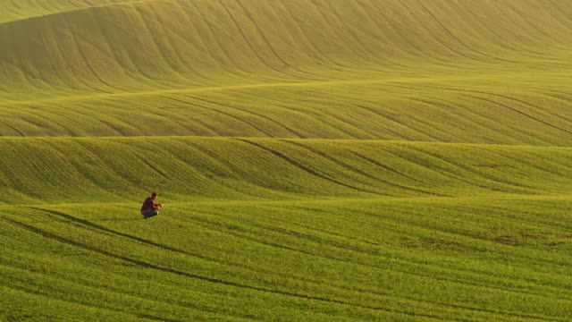 pan farmer walking in the field - rolling landscape stock videos & royalty-free footage