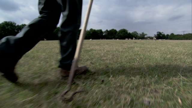 A farmer walks across a pasture. Available in HD.