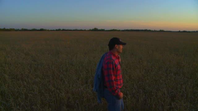 vidéos et rushes de agriculteur franchit cultures au crépuscule - seulement des jeunes hommes
