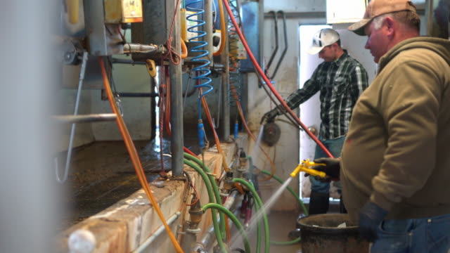 farmer washing milking machinery on a farm - dairy product stock videos & royalty-free footage
