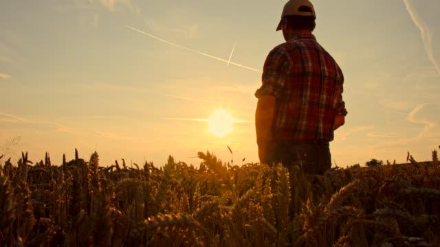 WS CS Farmer Wirtschaftshilfe seiner Stirn im Feld