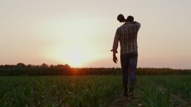 ws farmer wiping off sweat from forehead while walking on the field at sunset - lavoratore agricolo video stock e b–roll