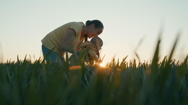 日没時に小麦畑で赤ちゃんを持つ農家。農業の概念。 - 穀物 ライムギ点の映像素材/bロール