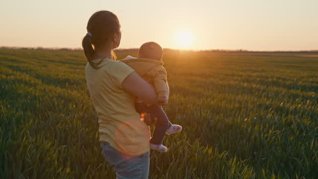 farmer with baby in wheat field at sunset. agricultural concepts. - farm stock videos & royalty-free footage