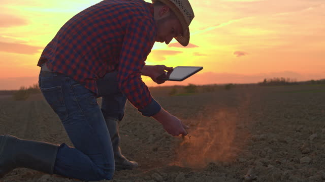 ms farmer with digital tablet scooping and examining dirt in rural plowed field at sunset - graphics tablet stock videos & royalty-free footage