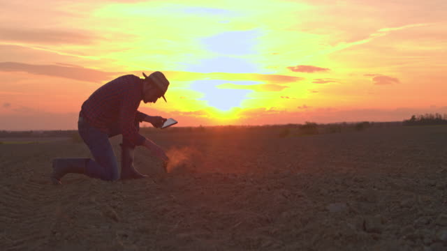 ms farmer with digital tablet scooping and examining dirt in rural plowed field at sunset - scrutiny stock videos & royalty-free footage