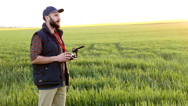 landwirt mit drohne in abisolierten bereich - cereal plant stock-videos und b-roll-filmmaterial